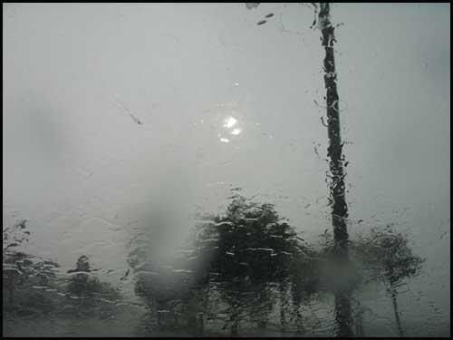 Sanford Holland Wetter