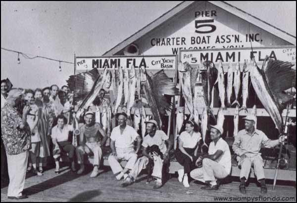 2013-0817-Miami-Fish