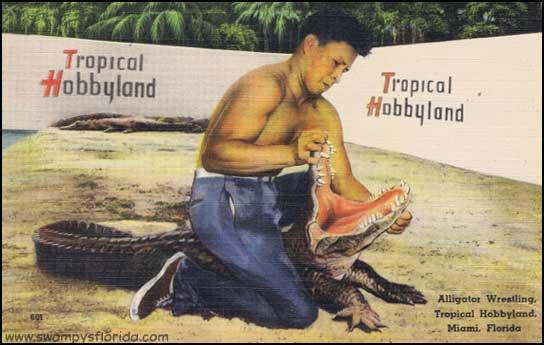 2013-1205-TropicalHobbyland