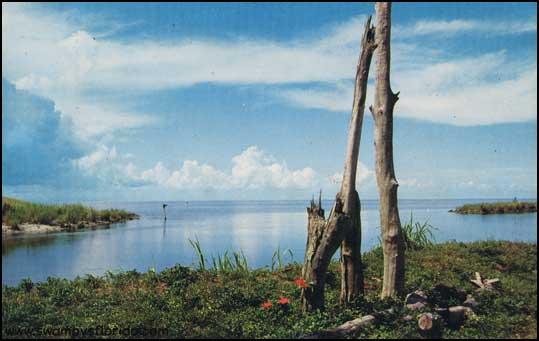 2013-1221-Everglades