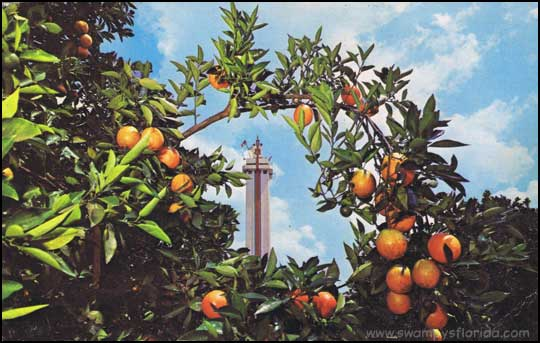 2014-0310-CitrusTower