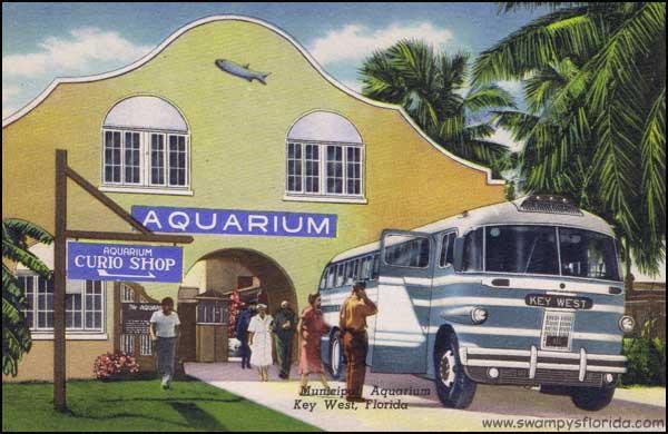 2014-0408-FlaKeys-Aquarium