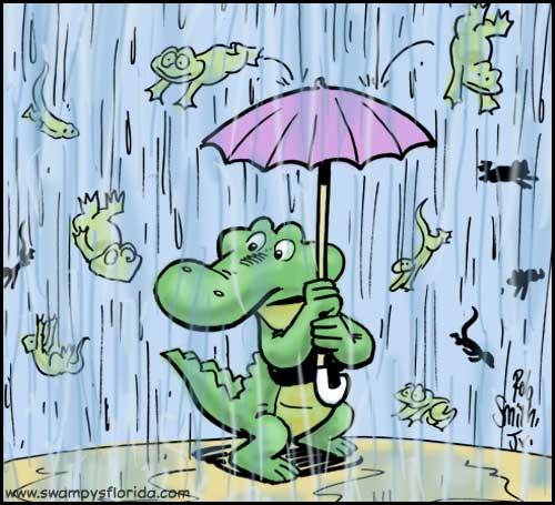 2014-0418-RainingFrogs