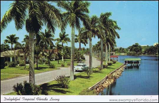 2014-0705-FloridaScene