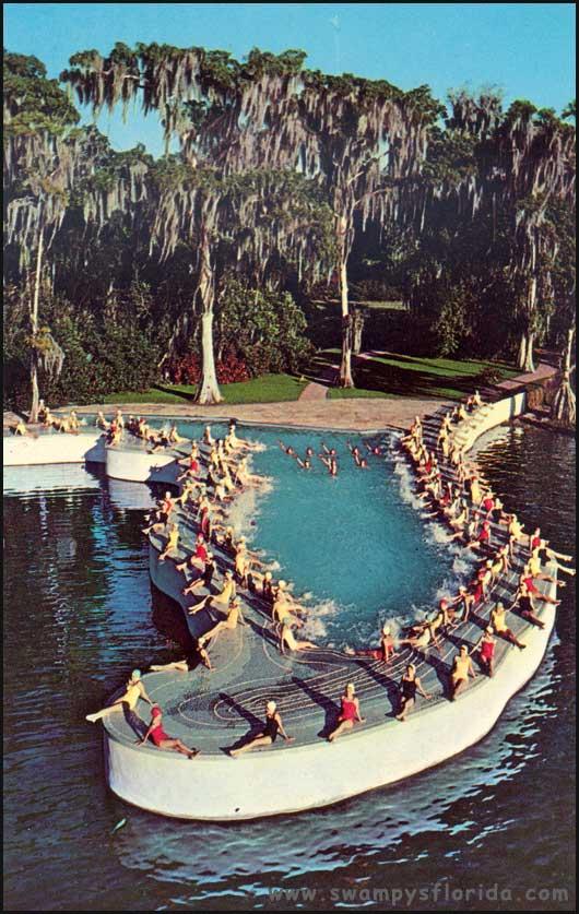 Swampy S Postcard Monday The Cypress Gardens Florida Pool