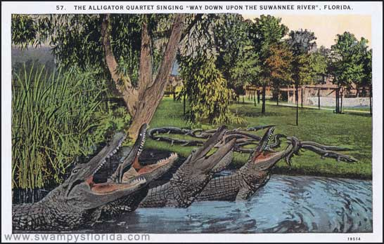 2014-1120-AlligatorsSinging