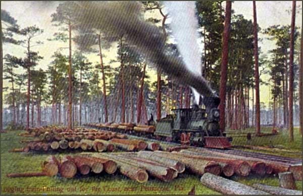 2014-1128-LoggingTrain-Pensacola