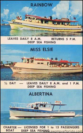 Swampy s florida postcards deep sea fishing off for Clearwater beach deep sea fishing