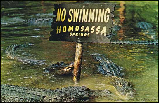 2016-0413-Homosassa-NoSwim