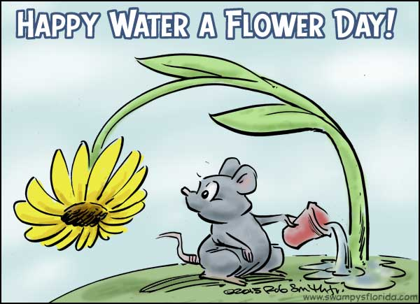 swampy�s florida says happy water a flower day � swampy