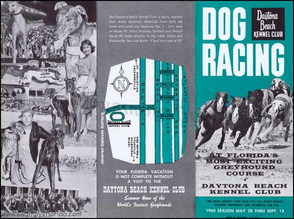 Swampy S Tuesday Ads Daytona Beach Kennel Club 1960
